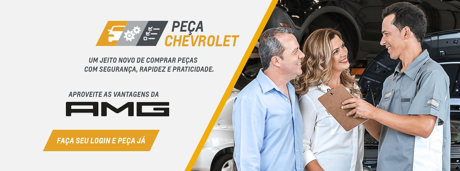 Autopeças em Caçador, Curitibanos e Videira SC: Comprar peças automotivas na AMG