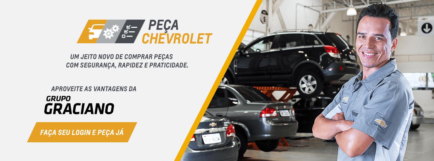 Autopeças em Araraquara, Bariri, Ibitinga e Matão SP: Comprar peças automotivas na GRACIANO