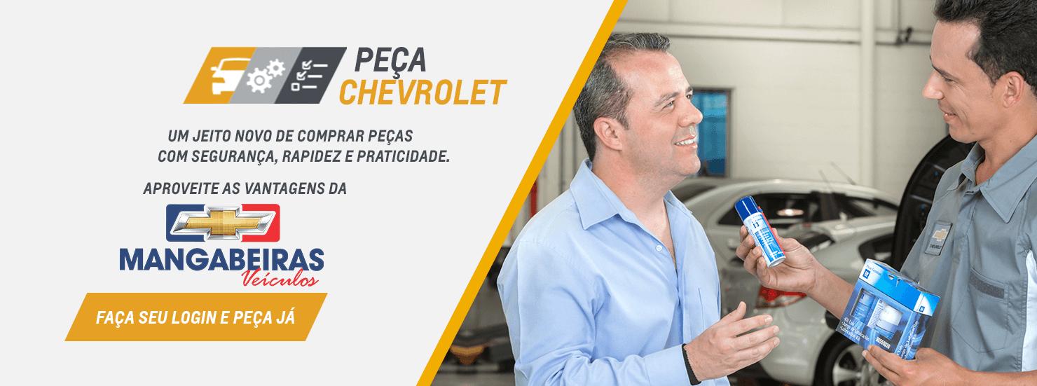 Autopeças em Maceió AL: Comprar peças automotivas na MANGABEIRAS