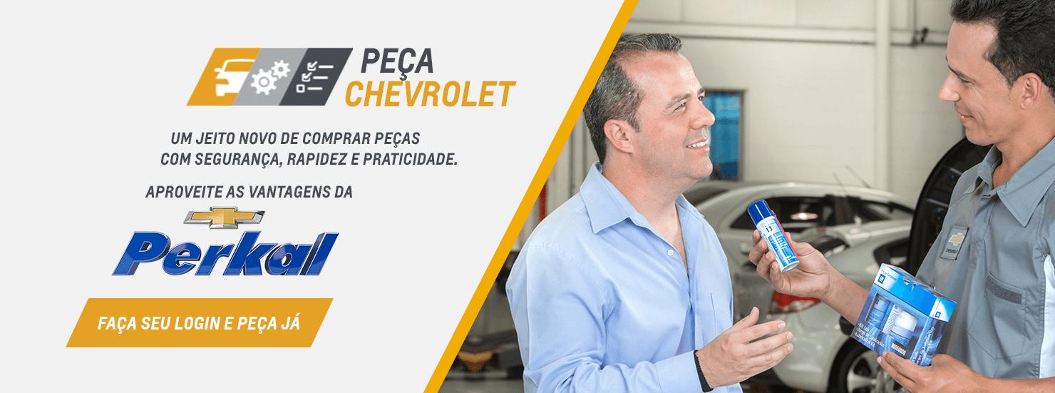 Autopeças em Campo Grande, Dourados, Nova Andradina e Ponta Porã MS: Comprar peças automotivas na PERKAL