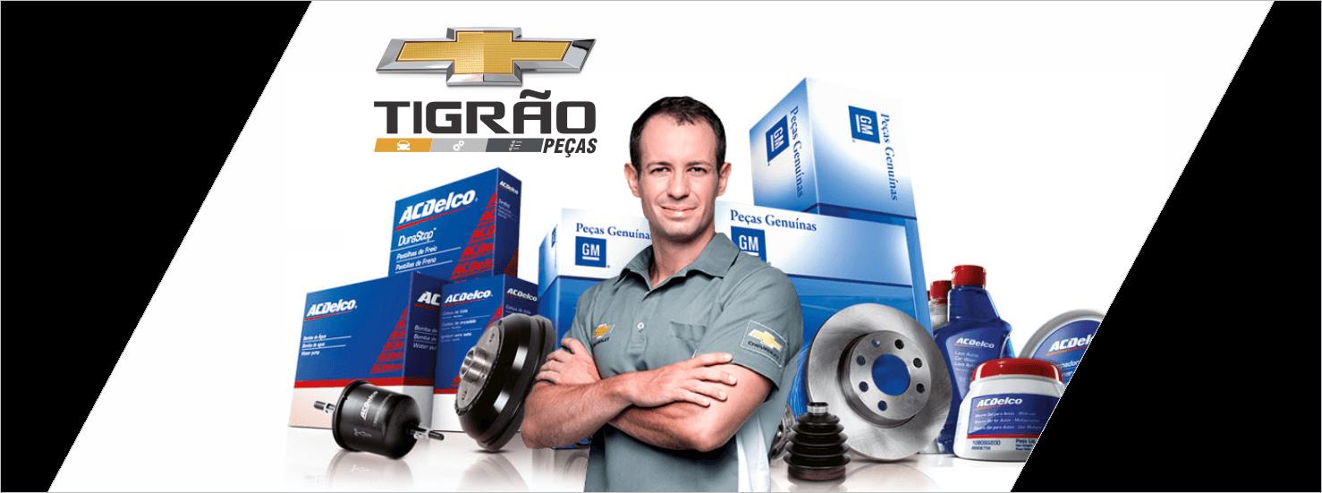 Autopeças em Ariquemes, Ji-Paraná e Porto Velho RO: Comprar peças automotivas na TIGRÃO