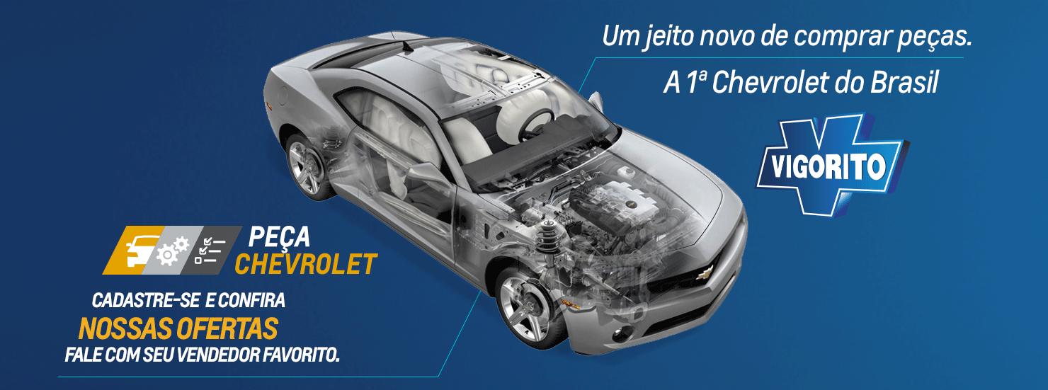 Autopeças em Guarulhos, Mauá, Santo André, São Bernardo do Campo e São Paulo SP: Comprar peças automotivas na VIGORITO